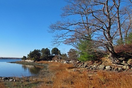 Great Bay Wildlife Refuge in New Hampshire