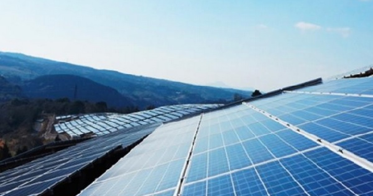 """Introducing """"States of Clean Energy Innovation,"""" A News and Data Hub"""